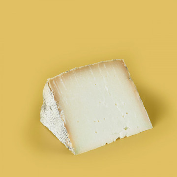 Manchego sheep cheese wedge