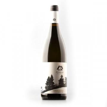 Albillo Criollo white wine...